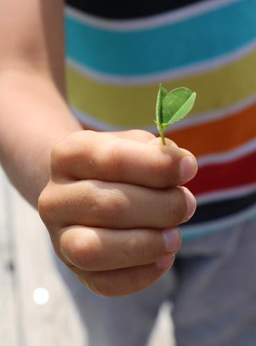Enfant jouant en pleine nature