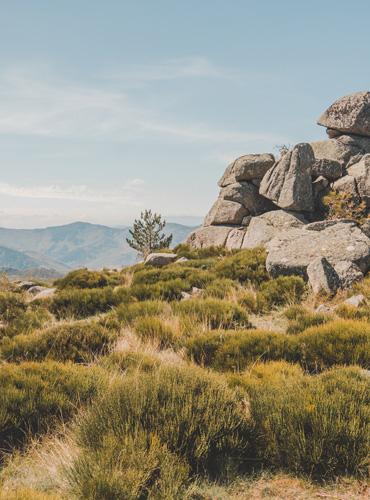 Randonnée sur le Mont-Lozère