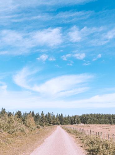 Un roadtrip en Margeride