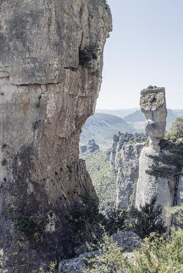Vases de Chine et de Sèvres