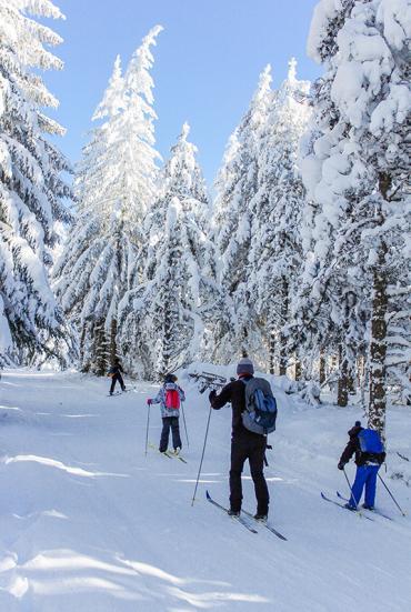 Ski de fond - Margeride