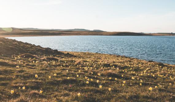 Aubrac - Route des lacs
