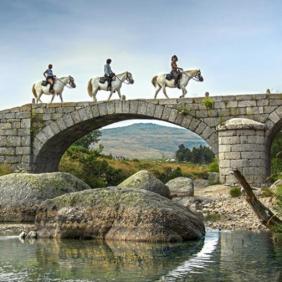 Randonnée à cheval en Lozère