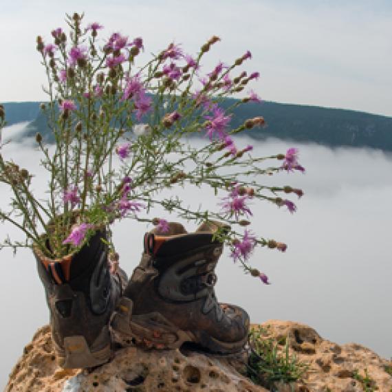 Randonnée pédestre - Lozère