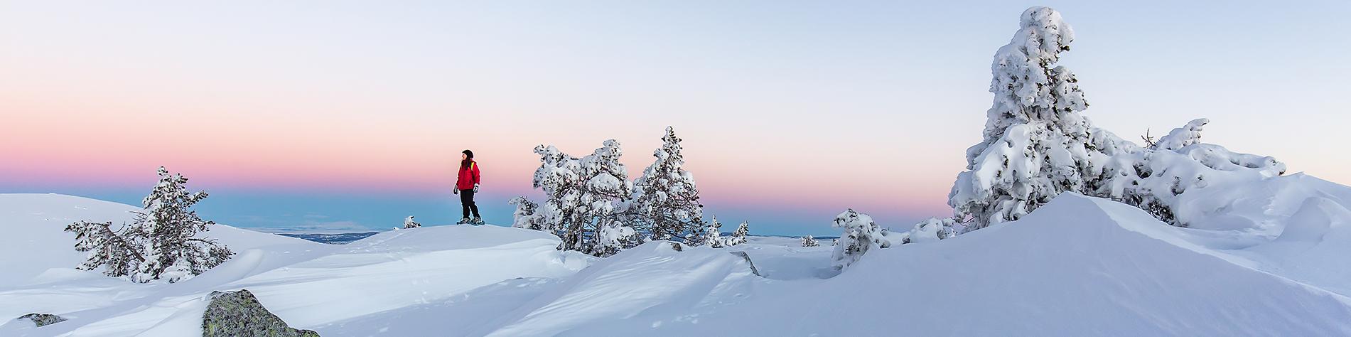Stage photo hivernal sur le Mont-Lozère